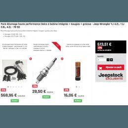 Pack Allumage haute performance Delco à bobine intégrée + bougies + graisse - Jeep Wrangler YJ 4.2L / CJ 3.8L, 4.2L - 78-90